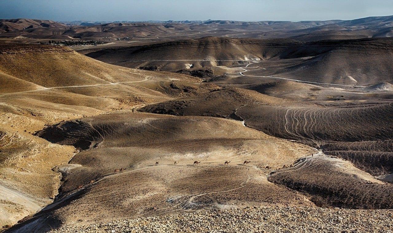 Mar Muerto Caravana Camel Jordania