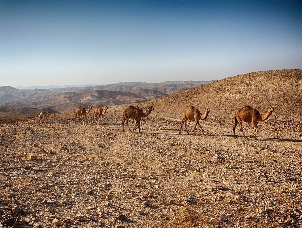 Mar Muerto Timna Rojo Israel