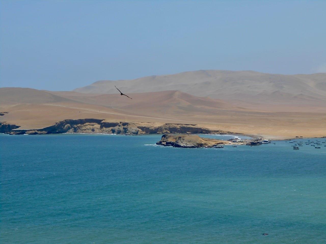 Mar Perú Paracas Perú