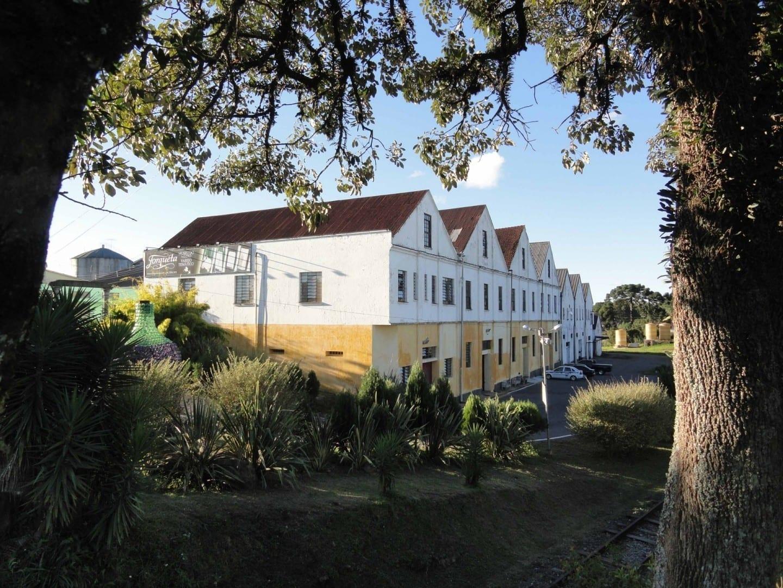 Museo de las Uvas y el Vino (Museum of Grapes and Wine) Caxias Do Sul Brasil