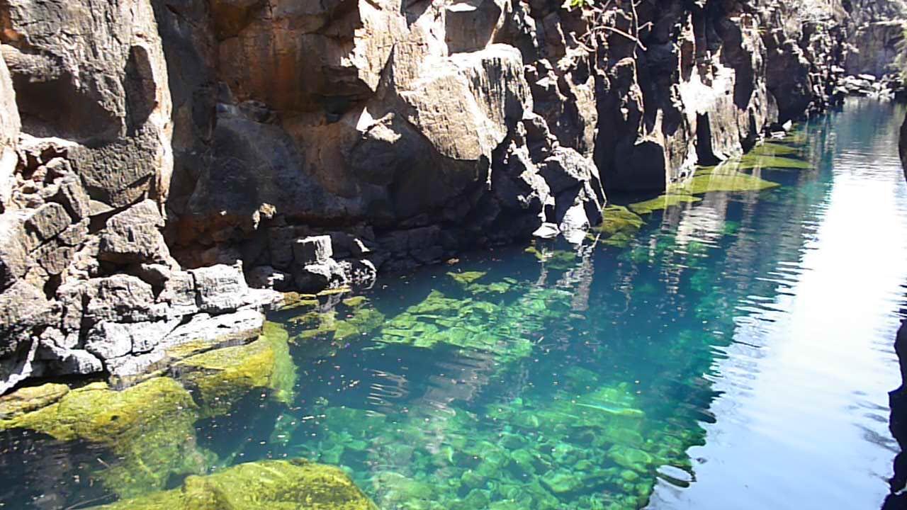 Nadar en agua dulce en Puerto Ayora, Galápagos en la isla de Santa Cruz. Isla Santa Cruz Ecuador