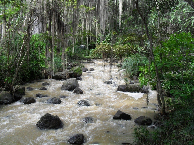 Parque el Gallineral San Gil Colombia