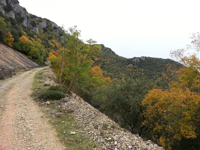 Parque Natural de la Font Roja Alcoy España