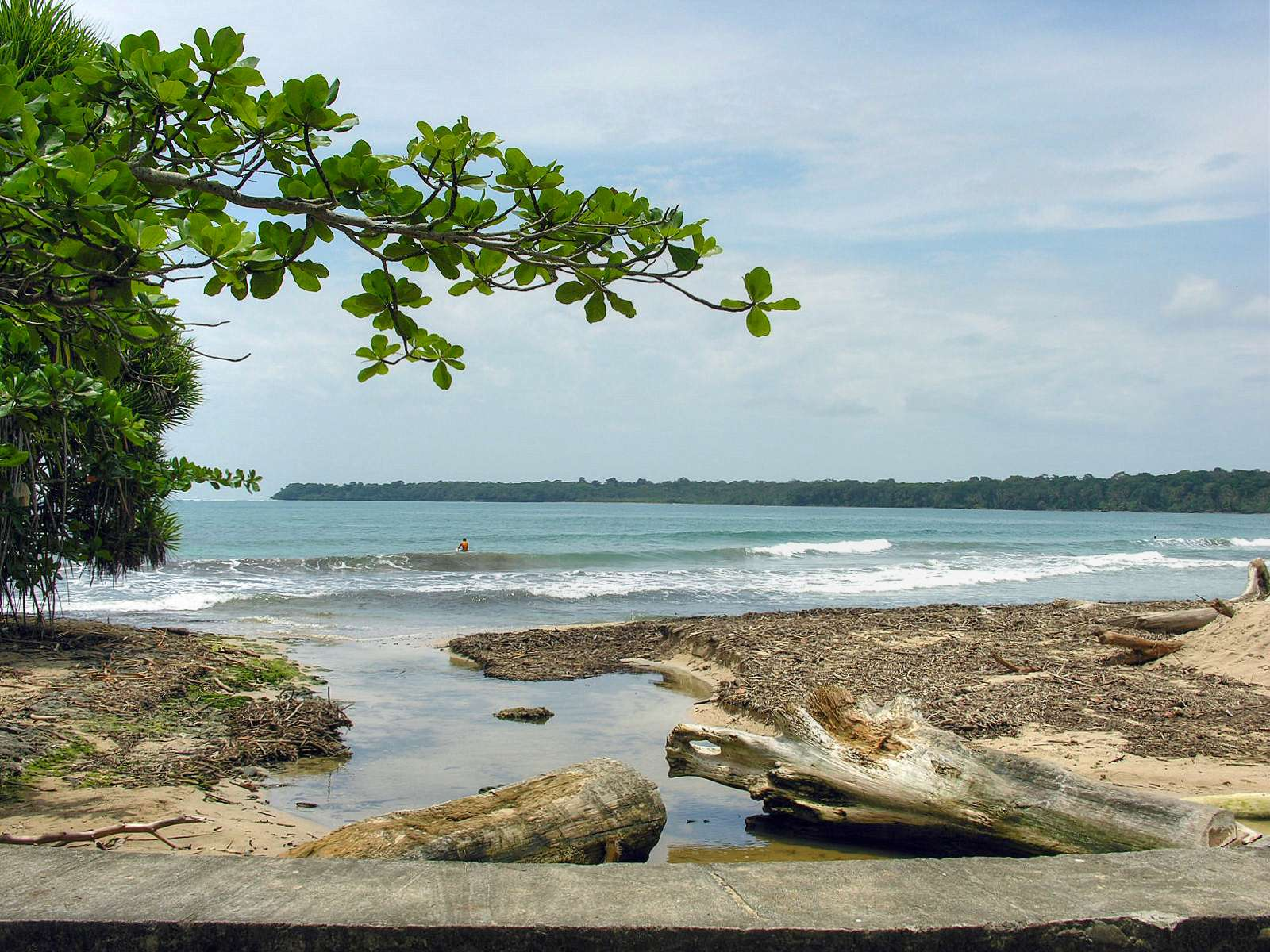 Playa Blanco, ubicada dentro del Parque Nacional Cahuita Cahuita Costa Rica