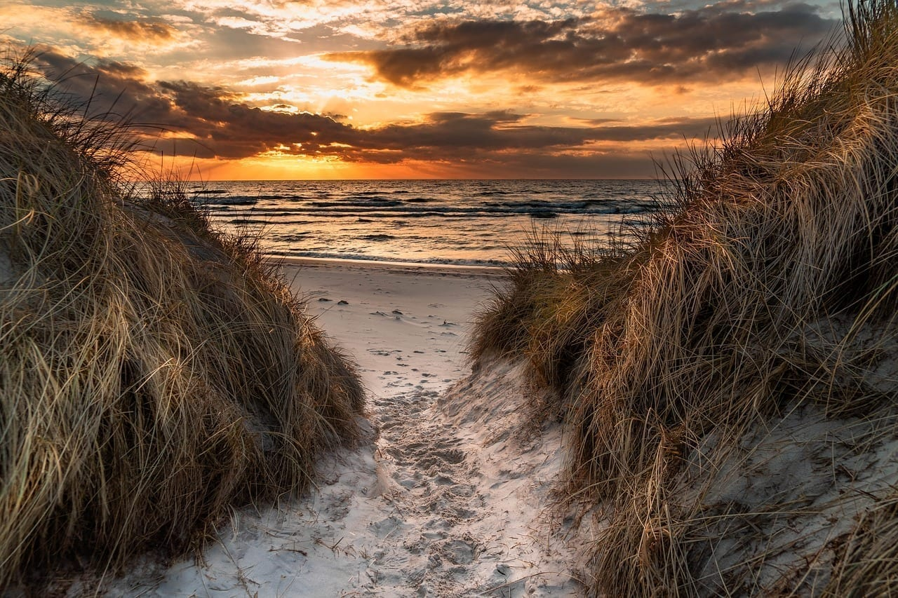 Playa De Poniente Mar Báltico Dunas México