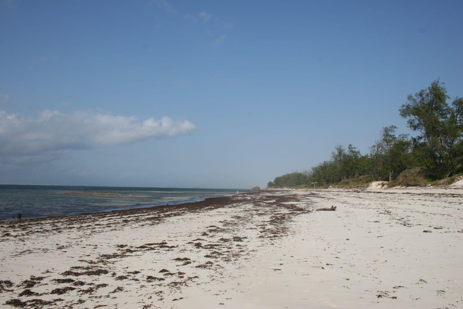 Playa de Watamu Malindi Kenia