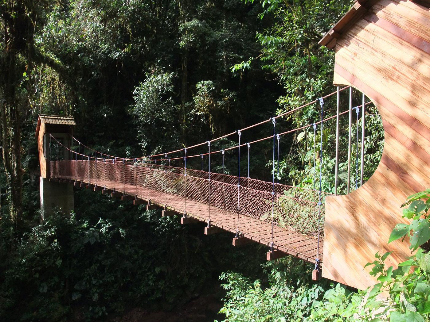 Puente colgante del Río Tigre Oxapampa Perú
