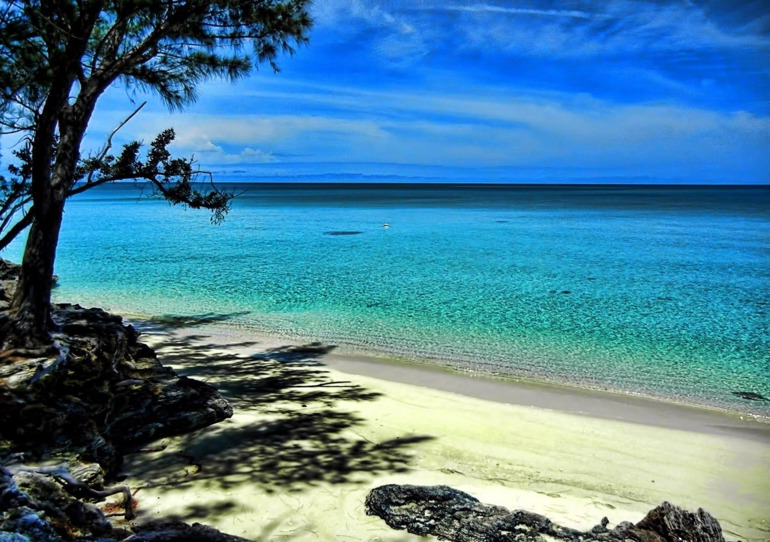 pulgar Eleuthera Bahamas