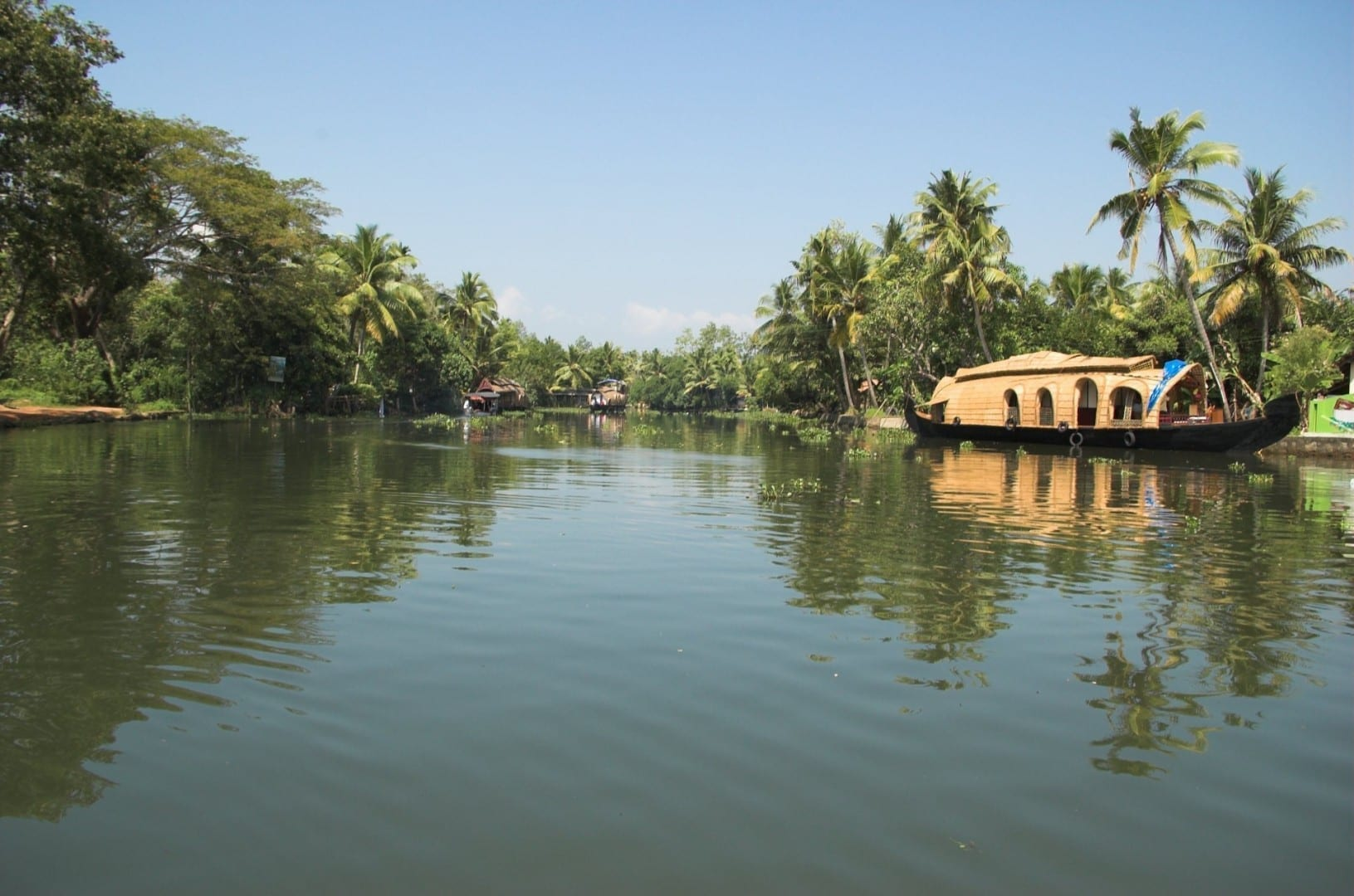 pulgar Kumarakom India