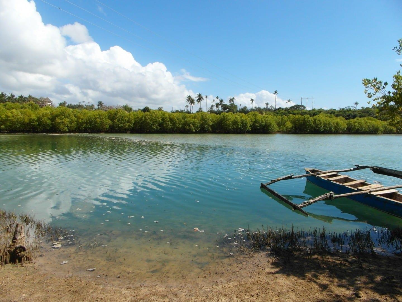 Río Kongo Playa Tiwi Kenia