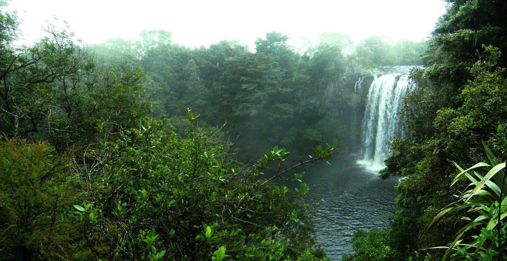 Rainbow Falls Kerikeri Nueva Zelanda