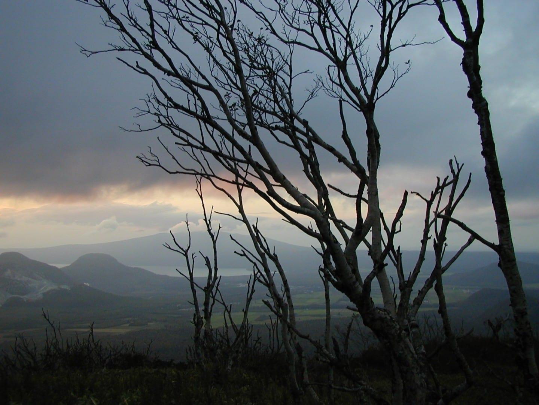 Árboles retorcidos cerca del lago Mashuko Akan National Park Japón