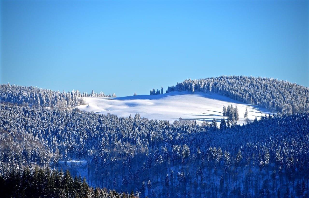 Selva Negra Pista De Esquí Bosque De Invierno Alemania