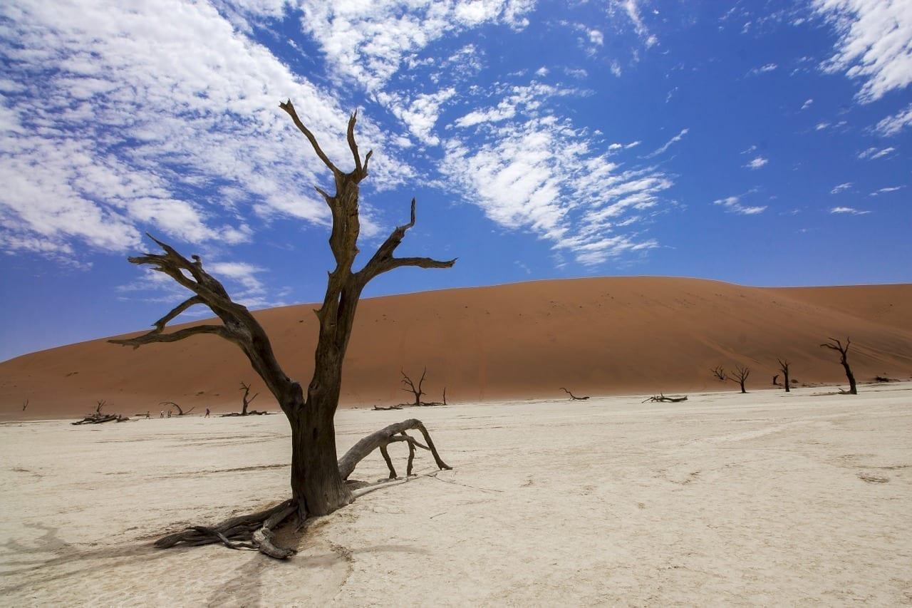 Sossusvlei Deadvlei Desierto Namibia