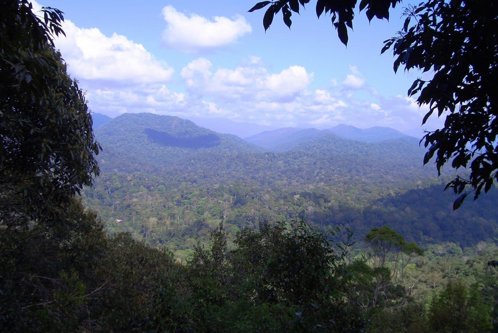 Teresek Hill, Taman Negara Taman Negara Malasia