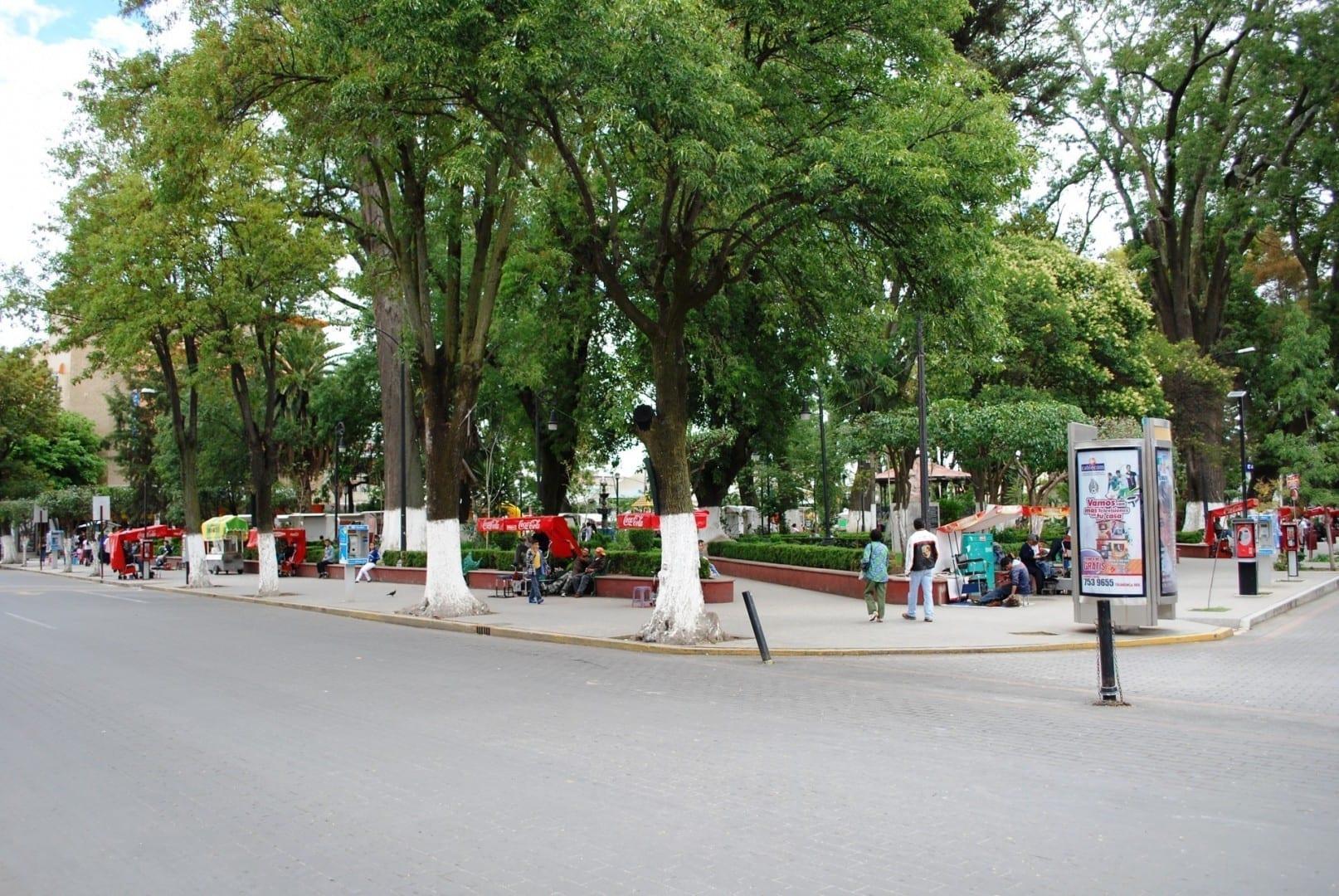 Thee Floresta Garden. Tulancingo (Tulancingo de Bravo) México