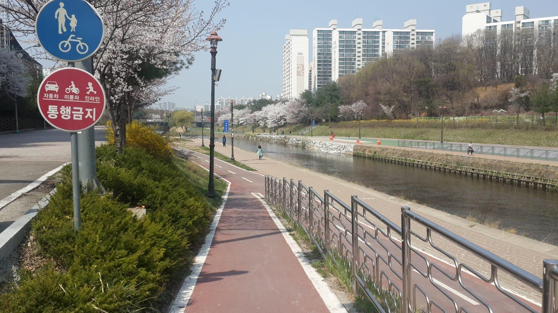 Vista de la corriente de Tan Yongin Corea del Sur
