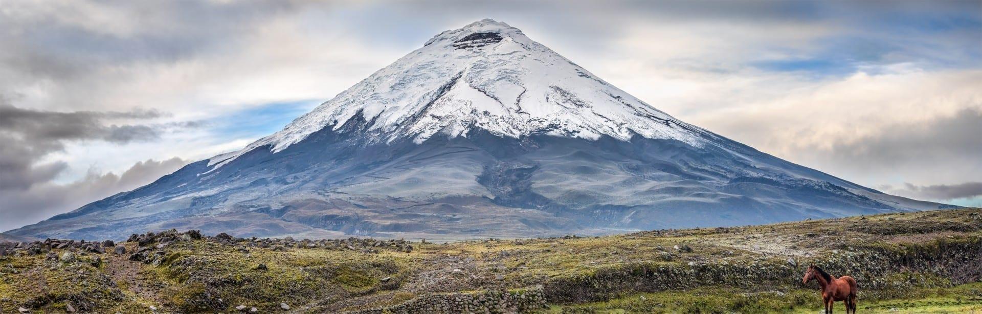 Vista del Cotopaxi Cotopaxi Ecuador